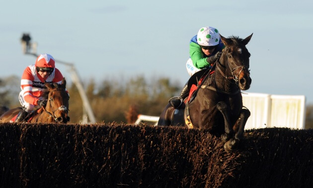 A Genie In Abottle: Grand National contender found dead in stable